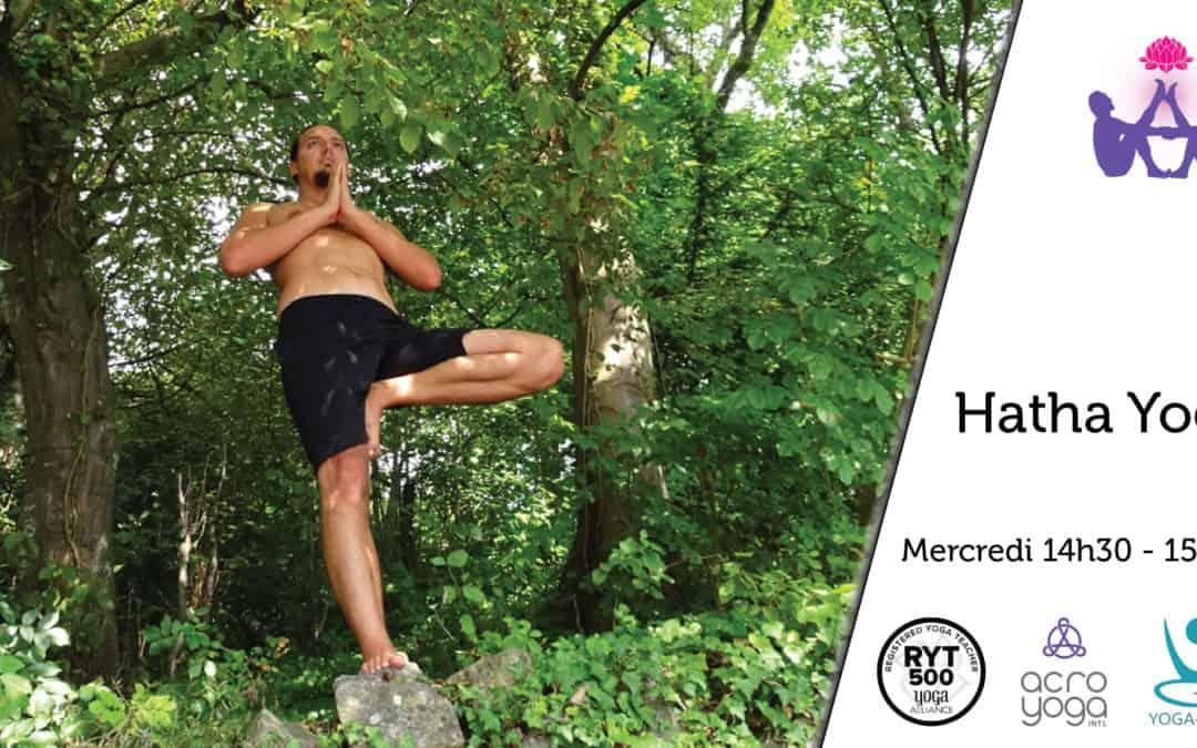 Hatha Yoga mer.