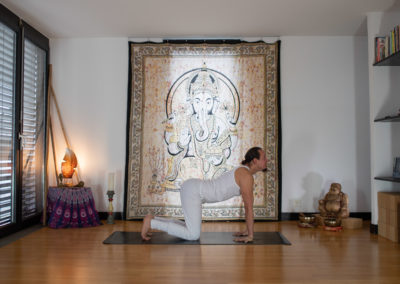 yoga-pranayogalife-asana-Marjaryasana