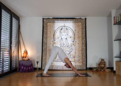 yoga-pranayogalife-asana-Parvatasana