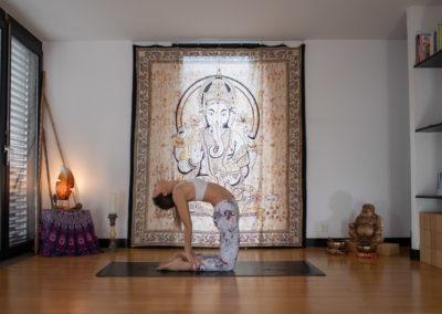 yoga-pranayogalife-asana-Ustrasana